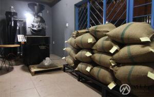 Cà phê nhân cbu gia lai